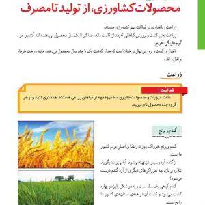 پاورپوینت  درس ششم  مطالعات اجتماعی  ششم  (محصولات کشاورزی از تولید تا مصرف)